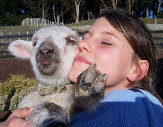 A Kiwi Farmstay: More cuddles