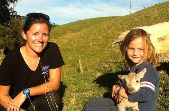A Kiwi Farmstay: Lambs