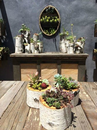 Sunset Magazine Headquarters and Gardens: WOW!
