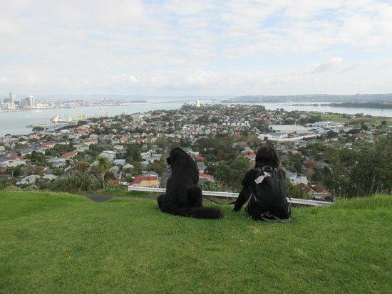 Hauraki Gulf: View from Mt Victoria up to Auckland Bridge