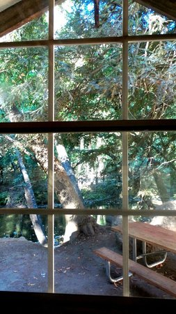Fernwood Resort: View from inside tent cabin #4