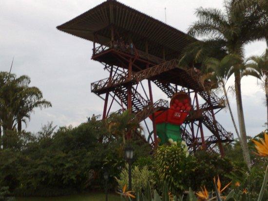 Panaca: Parc national du café