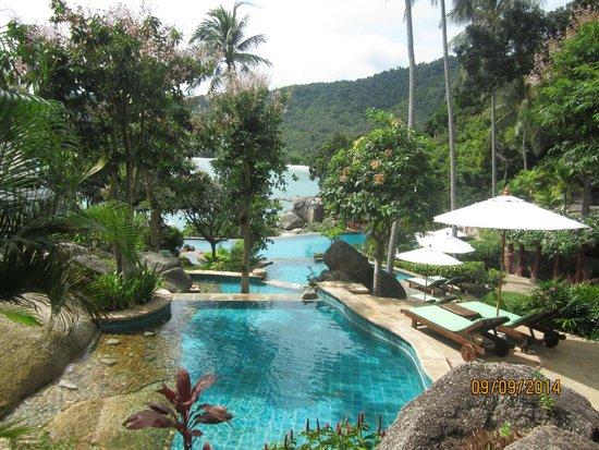 Panviman Resort - Koh Pha Ngan : piscine de l'hôtel