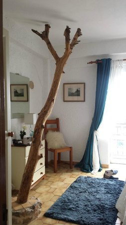 Winniehill Bed & Breakfast: Tree in the room