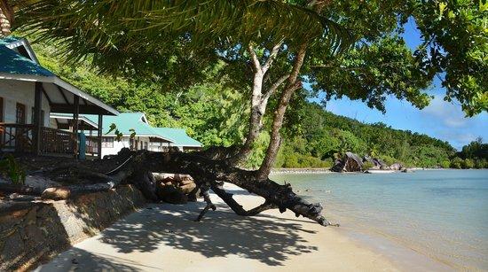 Iles des Palmes: der Strand bei Ebbe