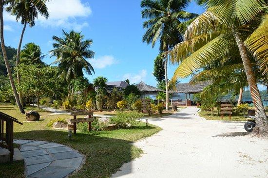 Iles des Palmes Eco Resort: Hotelgelände