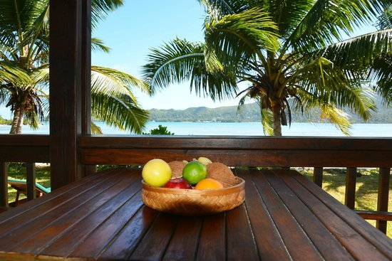 Iles des Palmes Eco Resort: Verandaaussicht