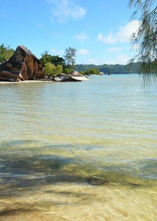 Iles des Palmes Eco Resort: Strand mit Rochen