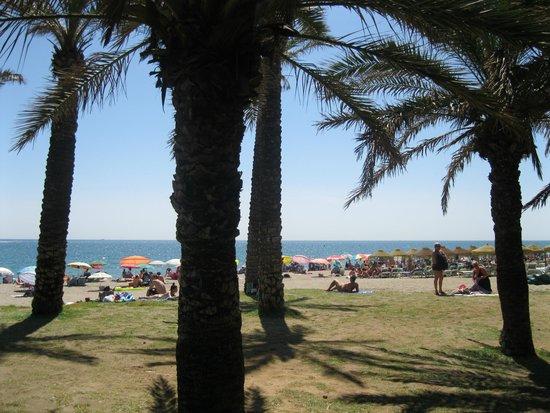 Melia Costa del Sol: Beach across the street from hotel