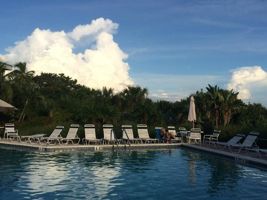 Shell Island Beach Club: Pool area