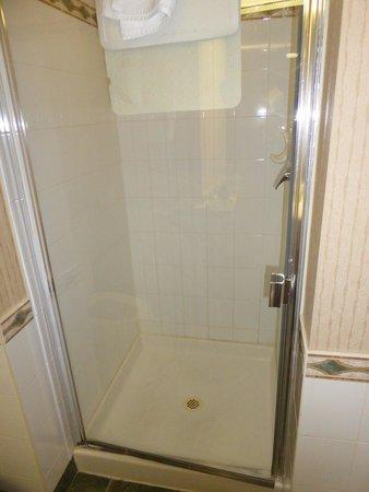 Best Western Plus Suites Downtown: shower