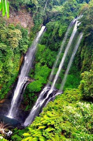 Sekumpul Waterfalls : Beautiful day trip