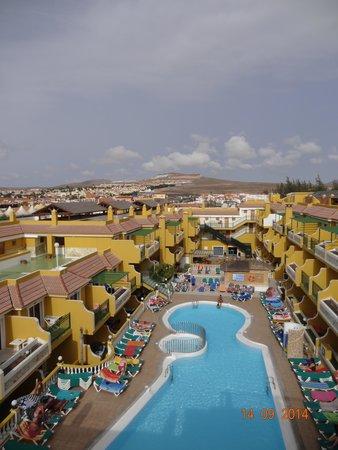 Caleta Garden: Looking down to the pool