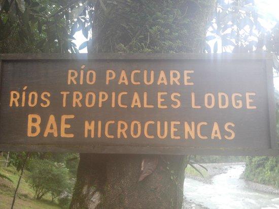 Rios Tropicales: Lodge
