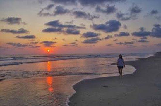 Casa Delfin Sonriente: the beach
