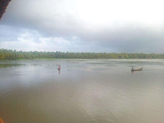 Vembanad Lake: Lake
