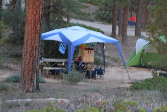North Campground: Campsite with tent and and Table Canopy
