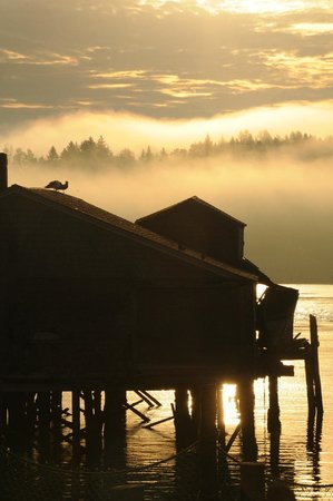 Lubec, ME : McCurdy Smokehouse at dawn