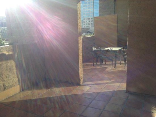Hyatt Regency Phoenix : Morning sun