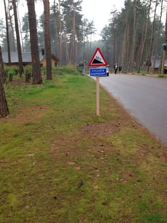 Center Parcs Woburn Forest: Why Hire a Bike at £26 ?