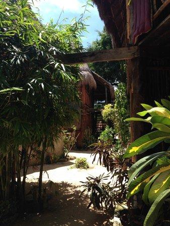 Posada Los Mapaches: Einzelne Cabanas (Gästezimmer)