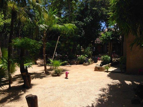 Posada Los Mapaches: Lounge Bereich