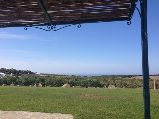 Country Resort and SPA Capo Nieddu: Kamer uitzicht