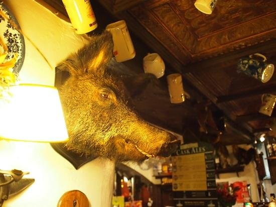 Hole in t'Wall: Quirky stuffed creatures all around the pub.