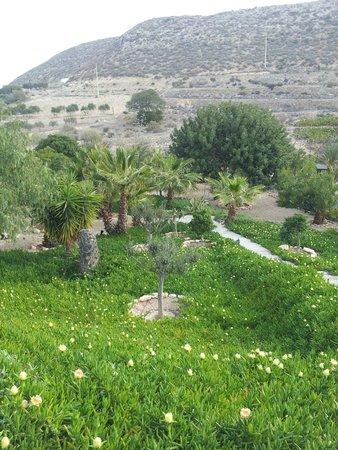 La Almendra y El Gitano: Jardín