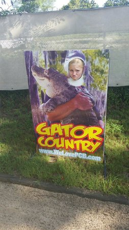 Gator Country Alligator Park: Daughter excited!