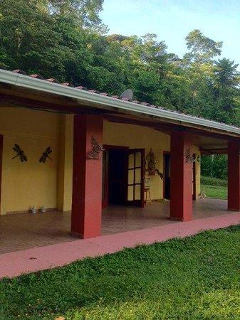Cabinas 3 Rios: view