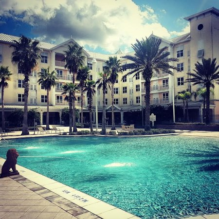Monumental Hotel Orlando : Love this pool!