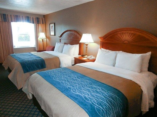 Comfort Inn Near Ellenton Outlet Mall: room1