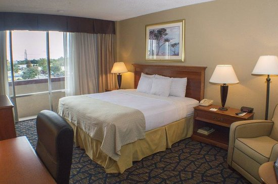 Holiday Inn Gainesville University Center: King Bed Executive Non Smoking