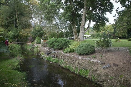 The Hartnoll Hotel: Part of the garden with the stream