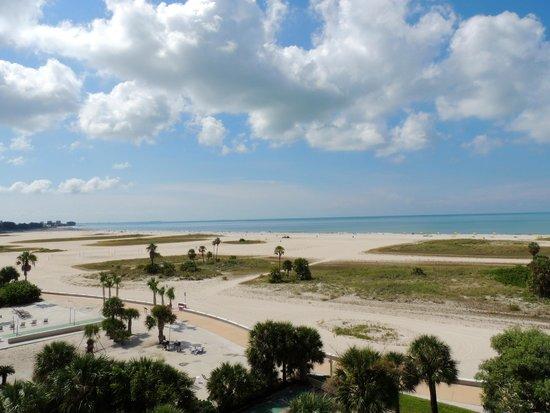 South Beach Condo/Hotel: View