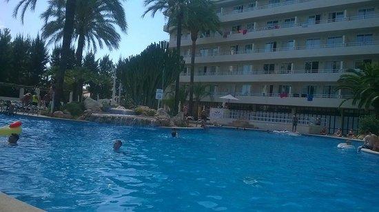 BCM Hotel: pool