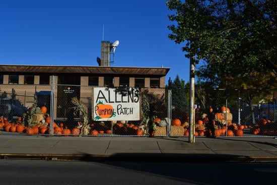 Pumpkin Patch Train - Review of Grand Canyon Railway