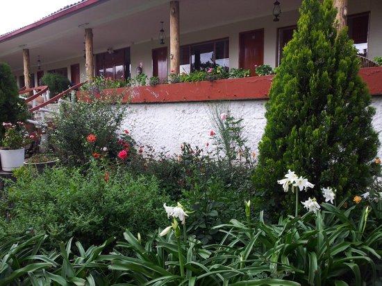 Hotel Colomba : Vista de las habitaciones del balcón, jardín