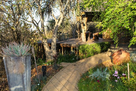 Mokolodi House: Path to the front door