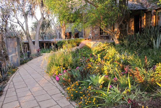 Mokolodi House: Beautiful garden