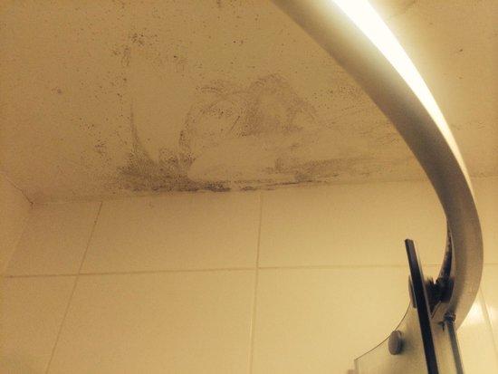 Morehampton Townhouse: Room 32  Mildew on roof in shower