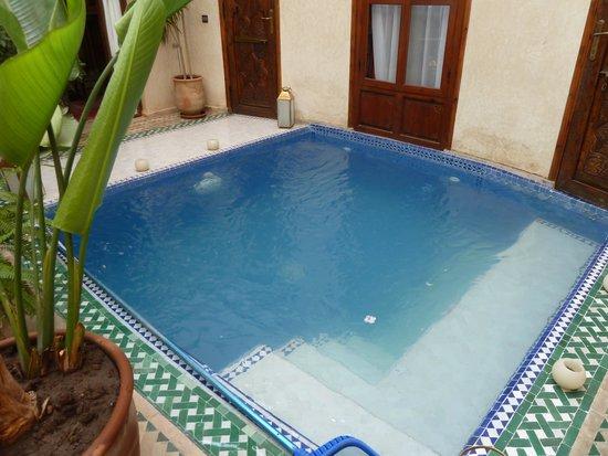 Riad de la Belle Epoque : Riad plunge pool.