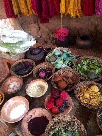 Centro de Textiles Tradicionales del Cusco: Tingimento com produtos naturais.
