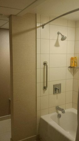 Minneapolis Marriott Northwest: Shower with a seperate toilet area.