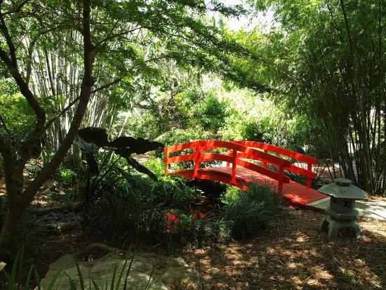 Miami Beach Botanical Garden : Japanese bridge