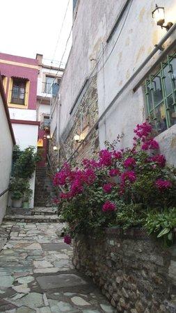 Casa Dionisio: Entry to the hotelito