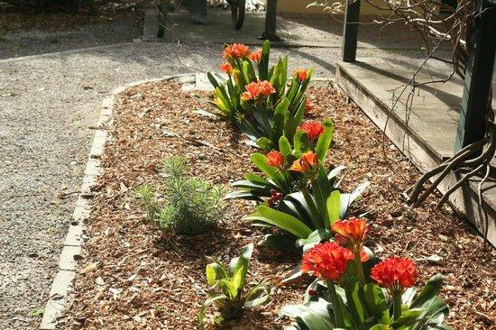 Nice Flower Garden Photo De Heritage Hill Museum And