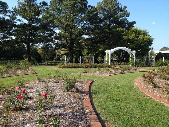 Huntington Park: Rose Garden