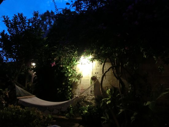 Hostal Casa Ivana: Relaxing in the garden, watching hummingbirds